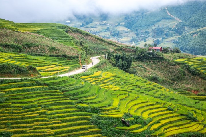 2015_VSP_Destinations_Hau-Thao-_-Sau-Chua-Villages_Rice-Paddies_Marcom-10
