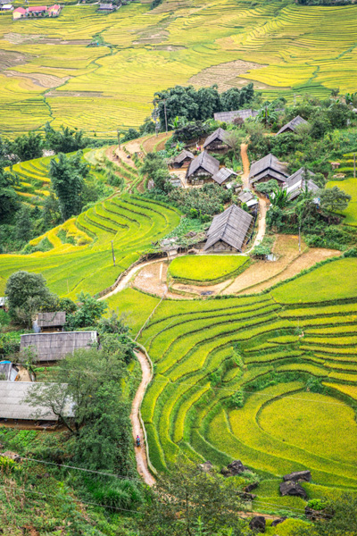Best time to visit vietnam sapa